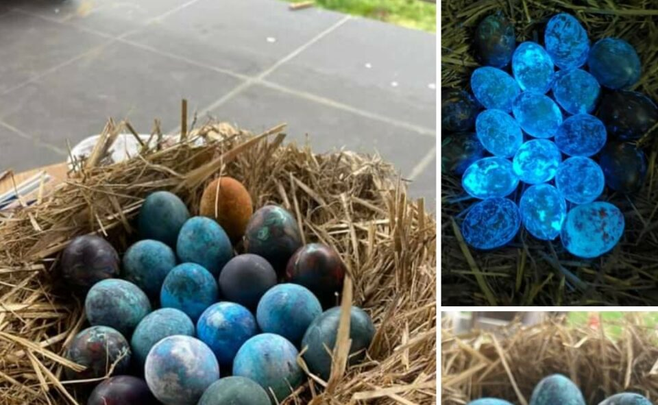 ФОТО: Димитров се пофали со чудни велигденски јајца